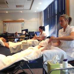three shires school of reflexology 250
